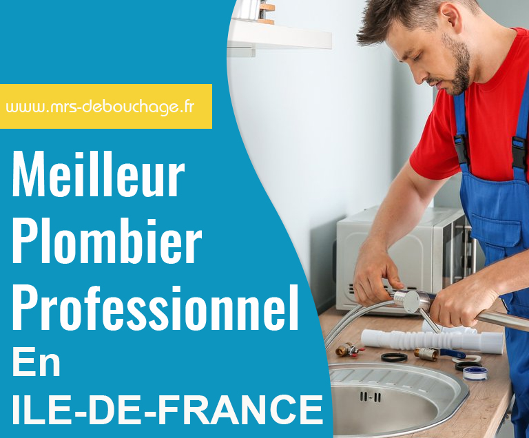 Mrs Debouchage affiche du meilleur plombier professionnel en ile de france